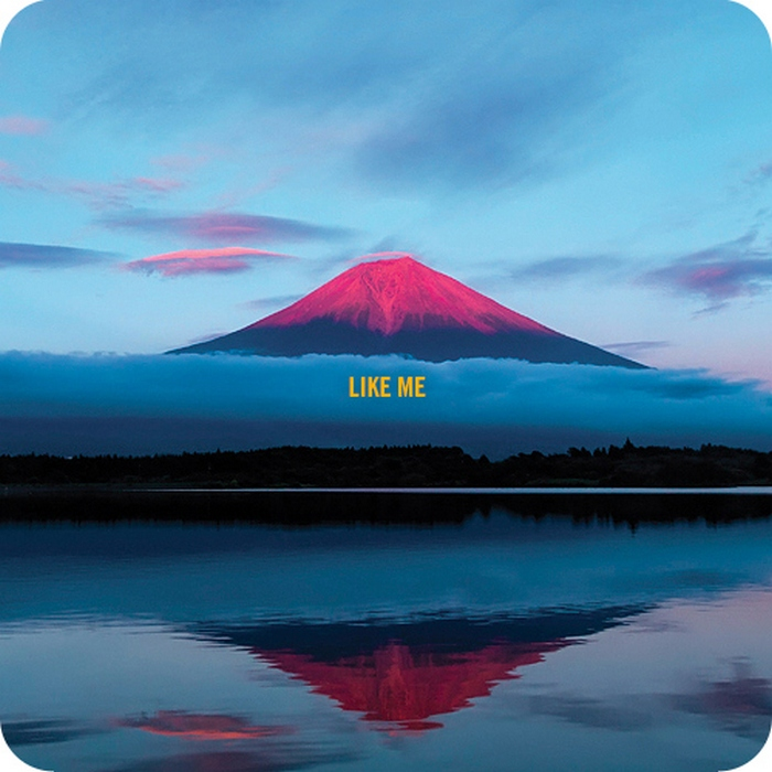 "What Makes a Writer Truly Great? Pink mountains with ""Like Me"" labels, of course."