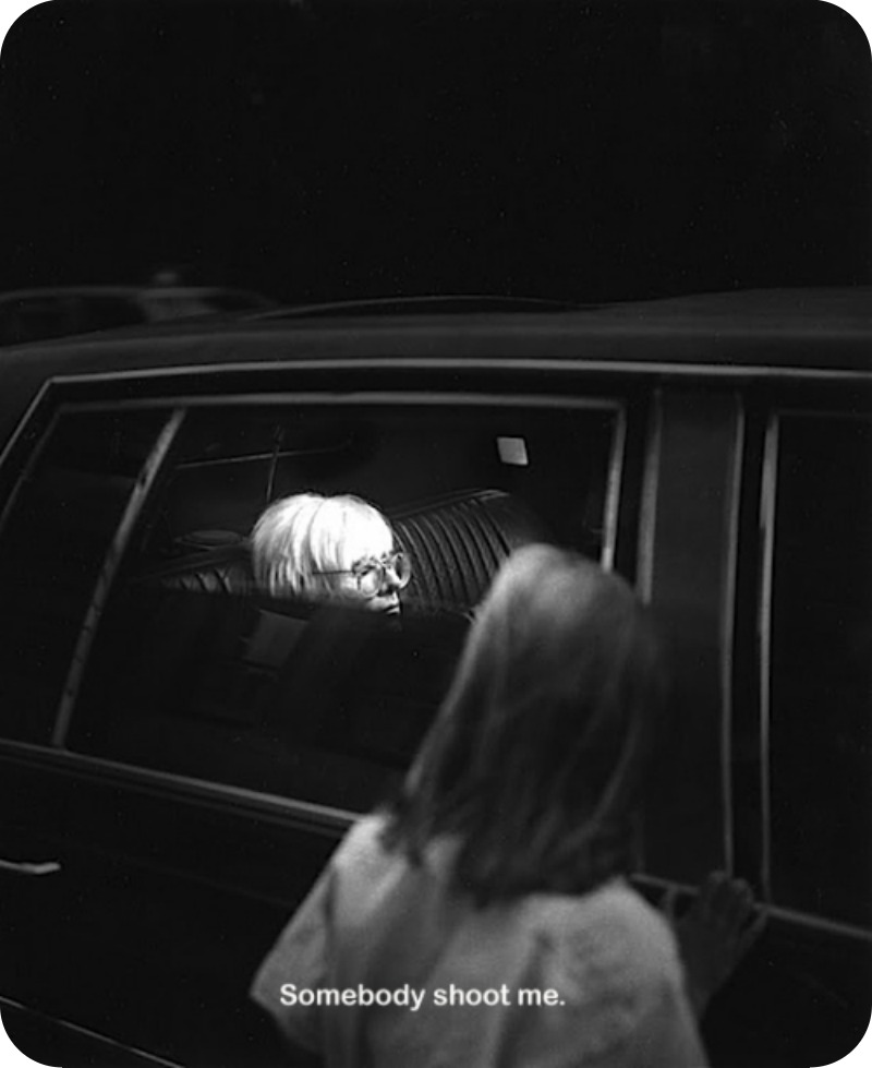 Warhol Limo Window